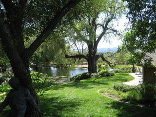 Pond_Castillo
