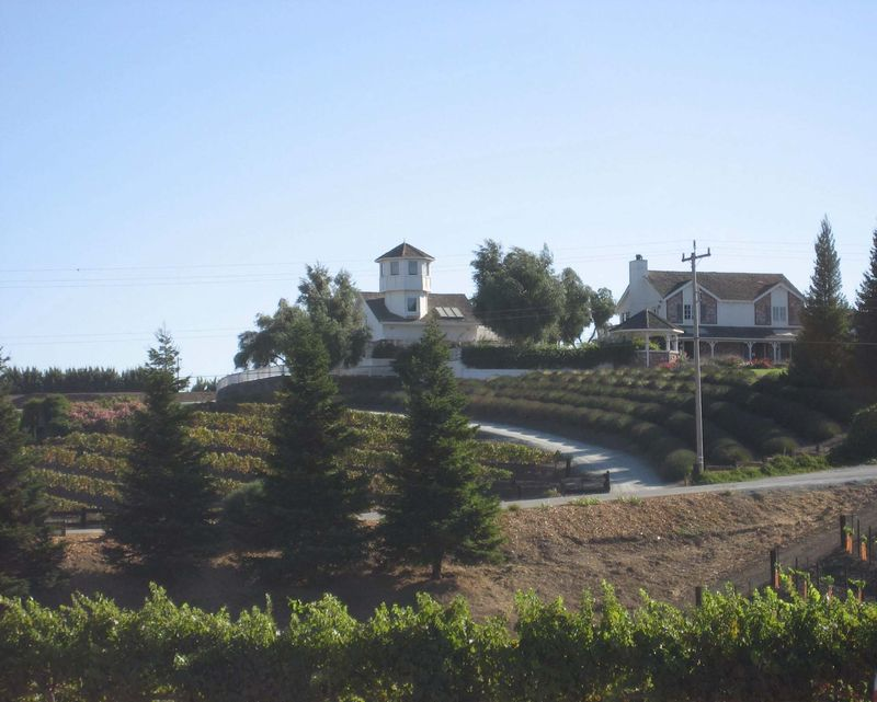 Leal_winery